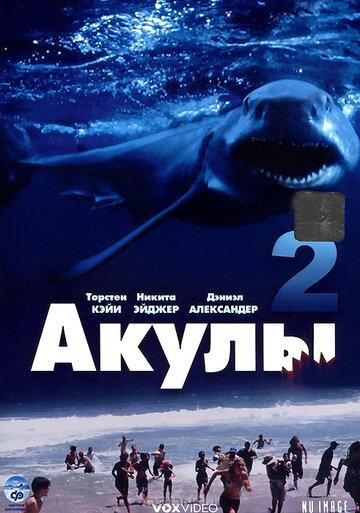 Акулы2