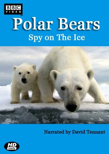 Белый медведь: Шпион во льдах (Polar Bears: Spy on the Ice)