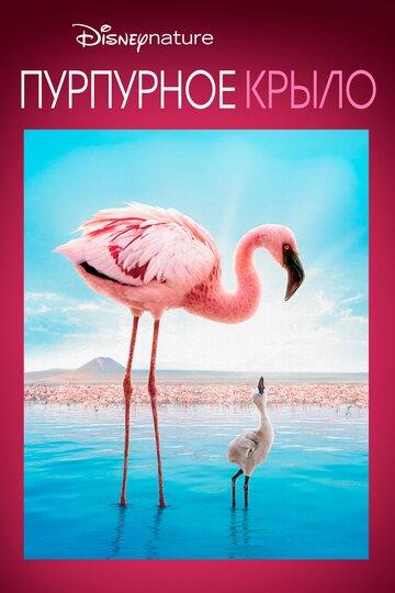 Пурпурные крылья: Тайна фламинго смотреть онлайн