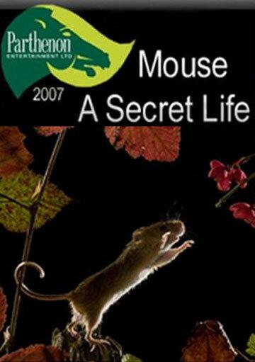 Тайная жизнь мышей (2007)
