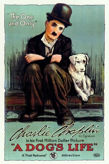 ������� ����� (A Dog's Life)