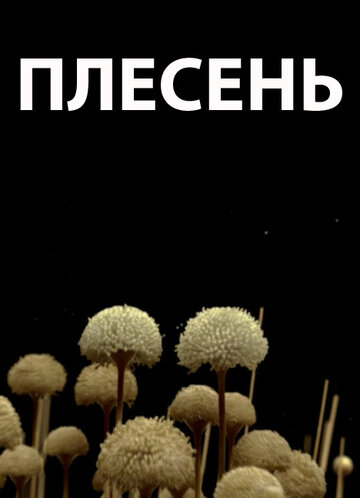 Плесень (ТВ)