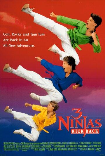 Три ниндзя наносят ответный удар 1994