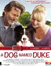 Duke (2012)