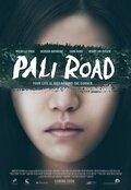 Дорога на Пали (2015)