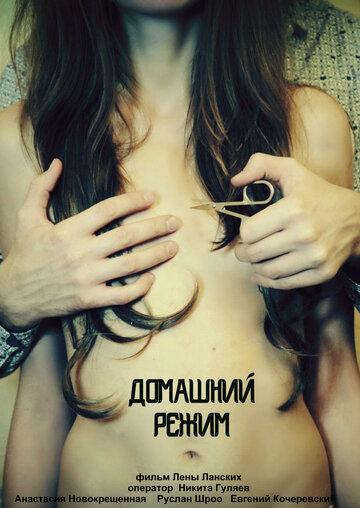 Фильм Домашний режим