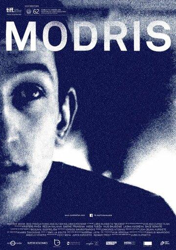 Модрис (2014) полный фильм