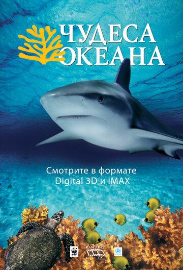 Чудеса океана 3D (2003)