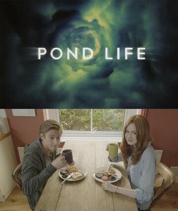 Жизнь Пондов 2012 | МоеКино