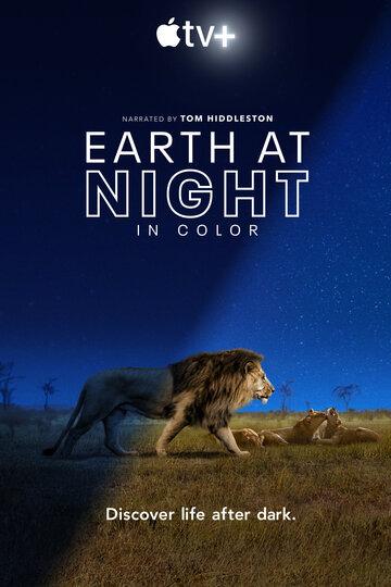 Земля ночью в цвете / Earth at Night in Color / 2020