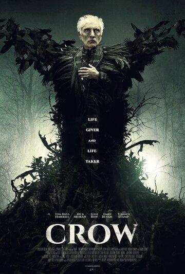 Ворон (2016)