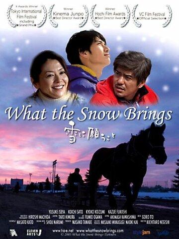 Что приносит снег (2005)