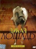 Дикая лошадь (1998)