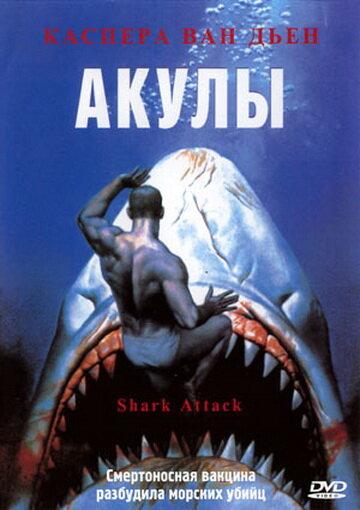 Акулы  (ТВ) (Shark Attack1999)