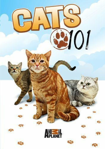 Энциклопедия кошек (Cats 101)