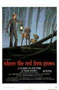 Цветок красного папоротника (1974)