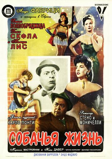 Собачья жизнь (1950)