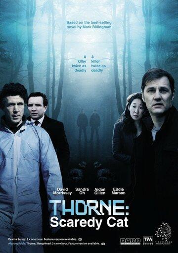 Торн: Пуганая ворона (2010) полный фильм онлайн