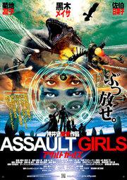 Штурмовые девушки (2009)