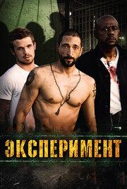 Эксперимент (2010)