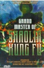 Смотреть онлайн Великий магистр Шаолинь кун-фу