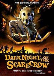 Смотреть онлайн Темная ночь пугала