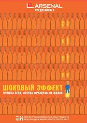 Шоковый эффект (2008)