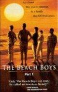 Подростки из прибрежного городка (The Beach Boys: An American Family)