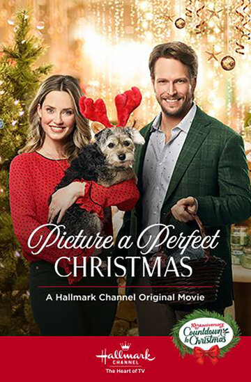 Образ идеального Рождества / Picture a Perfect Christmas (2019)