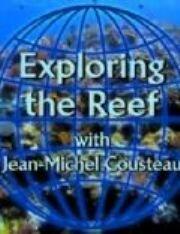 Смотреть онлайн Изучение рифов