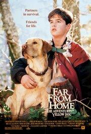 Смотреть онлайн Далеко от дома: Приключения желтого пса