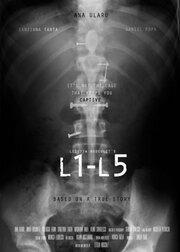 L1-L5
