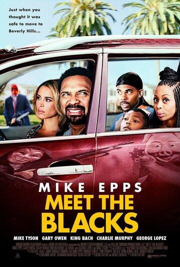 Знакомьтесь, семейка Блэков / Meet the Blacks (2016)