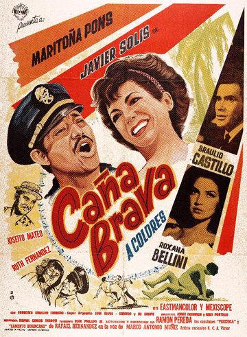 Канья Брава (1966)