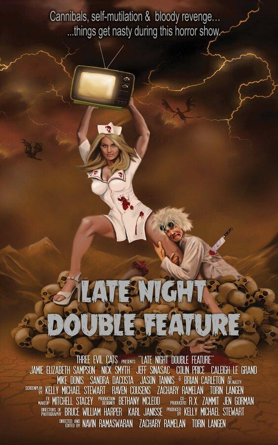 Двойной ночной сеанс (2016)