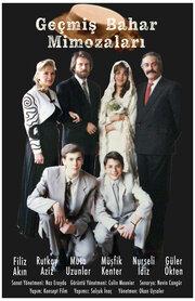 Мимоза расцвела весной (1989)