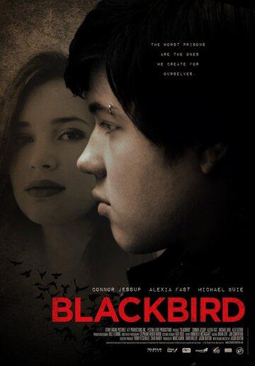 Черный дрозд 2012 | МоеКино