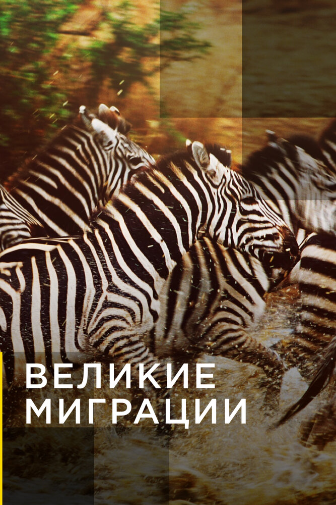 KP ID КиноПоиск 573283
