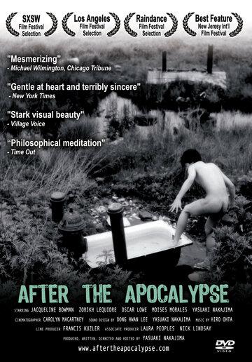 После апокалипсиса (2004)