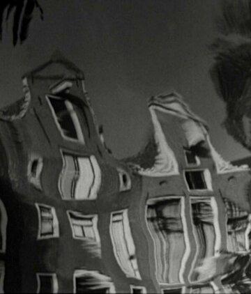 Зеркало Голландии (1950)