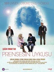 Спящая принцесса (2010)