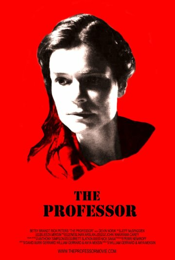 The Professor (2013)