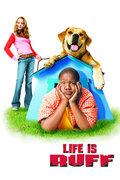 Лучший пес (2005)
