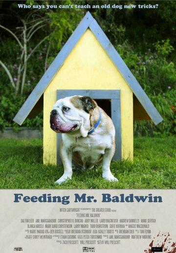 Кормление Мистер Болдуин смотреть онлайн