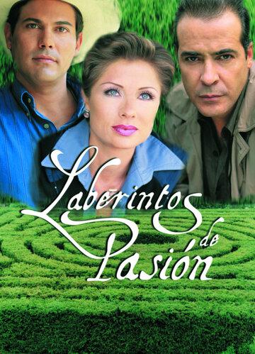Лабиринты страсти (1999) полный фильм