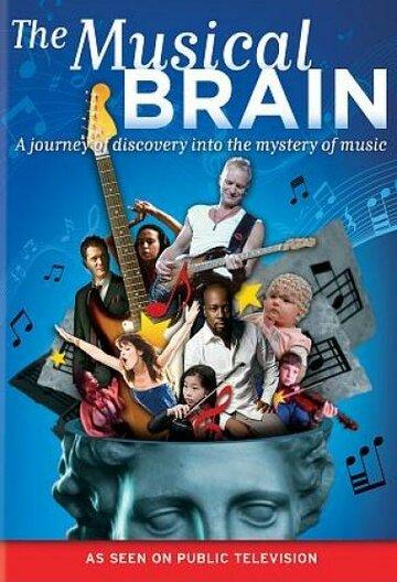 Мой музыкальный мозг