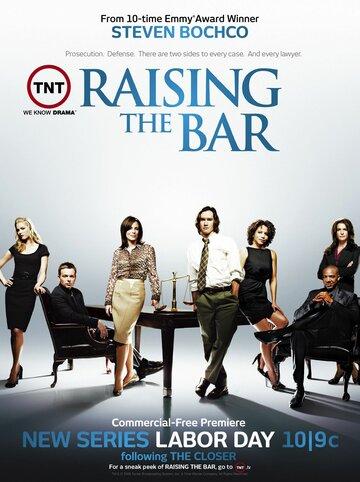 Постер к сериалу Адвокатская практика (2008)