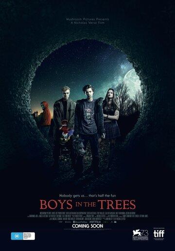 Мальчики на деревьях 2016