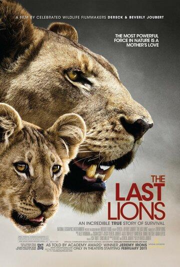 Последние львы полный фильм смотреть онлайн