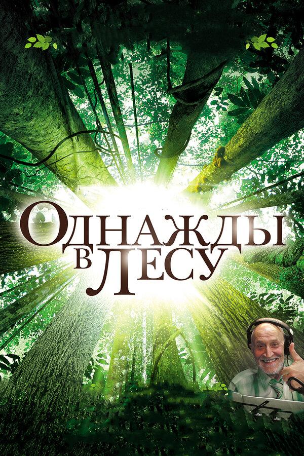 Отзывы и трейлер к фильму – Однажды в лесу (2013)